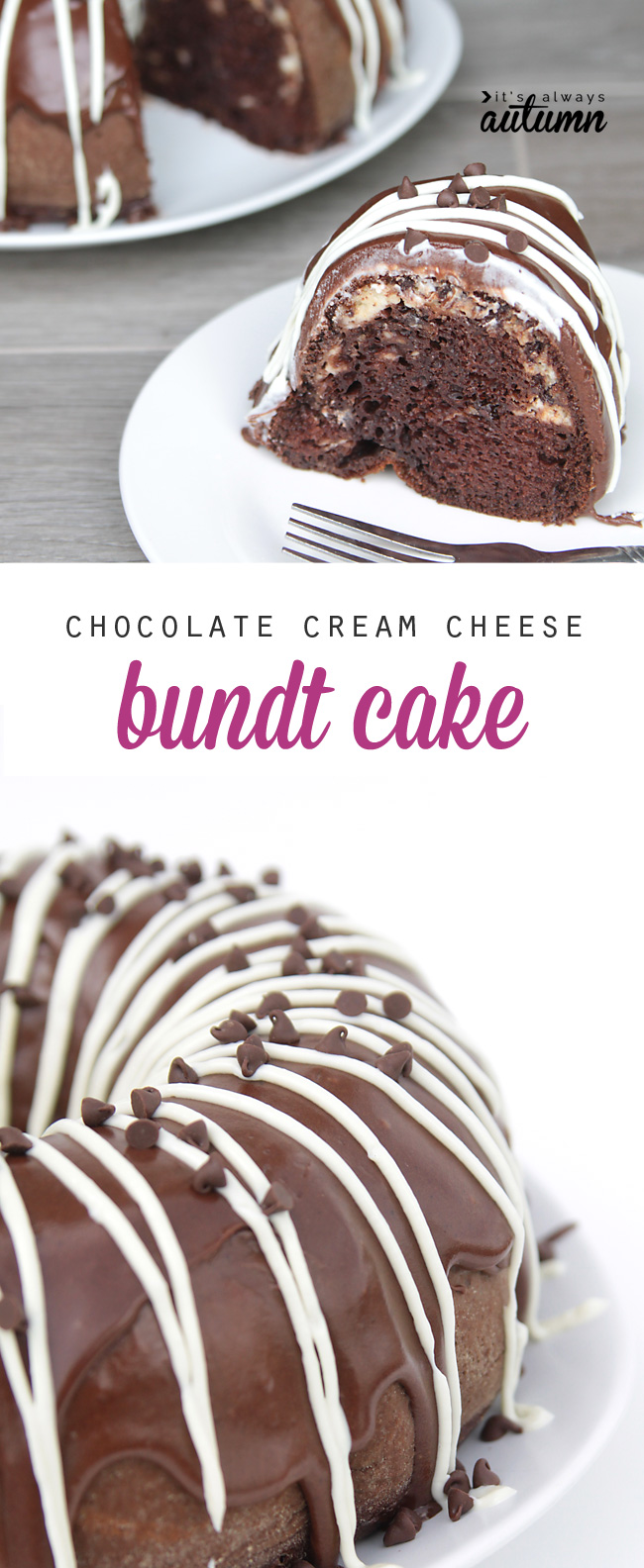you won't believe how easy it is to make this chocolate cream cheese bundt cake! it starts with a cake mix, and it ends up amazing.