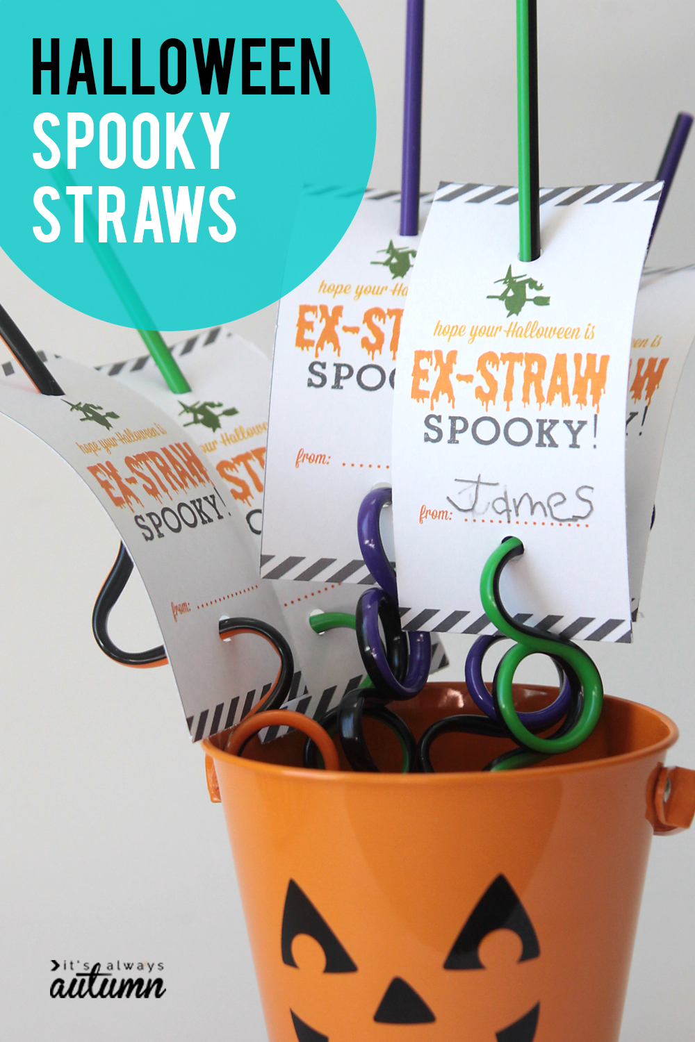Spooky Halloween straws! Great non-candy Halloween treat or gift idea.