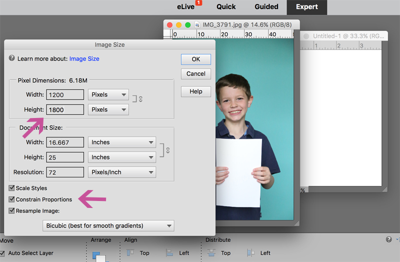 changing the photo size in photoshop elements