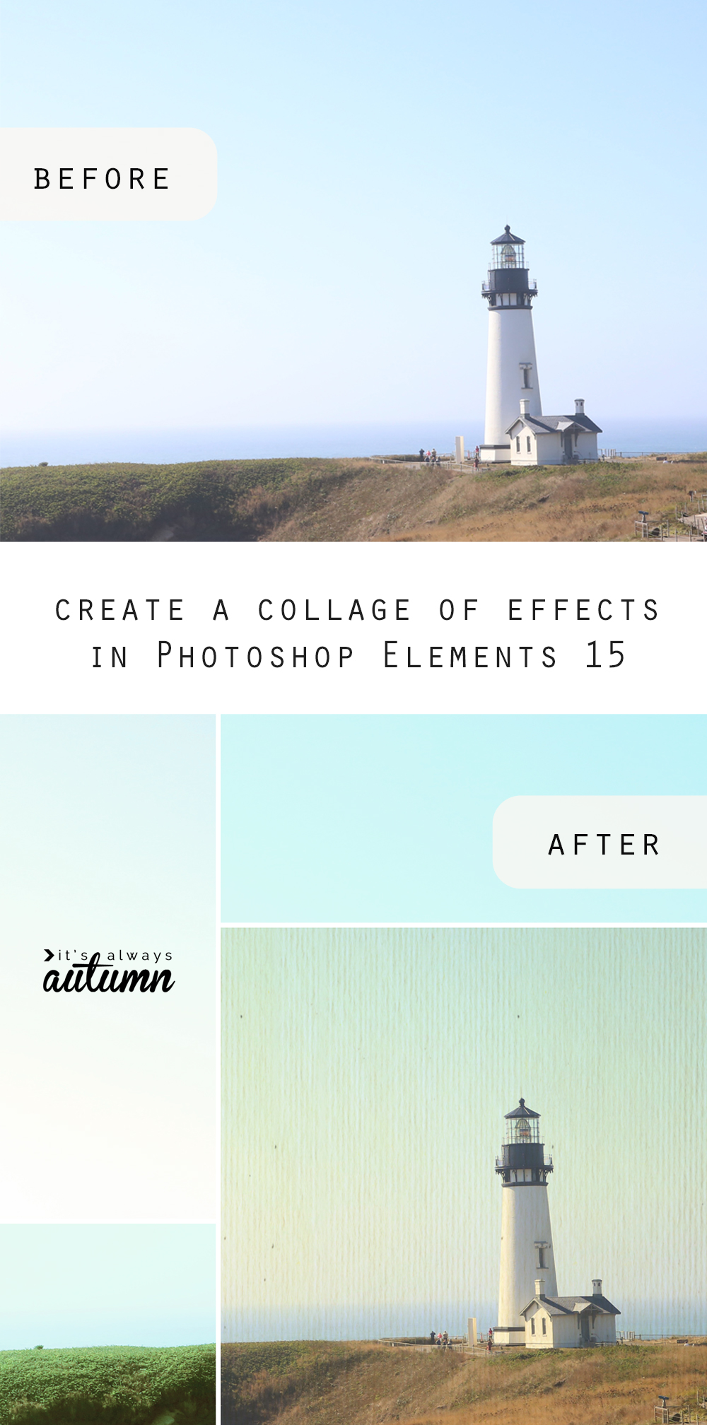 Add cool collage effects in just a few clicks to your photos using Photoshop Elements 15. Fun photo edits and editing tips.