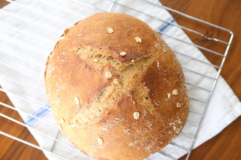 A crusty loaf of 5 ingredient whole wheat artisan bread