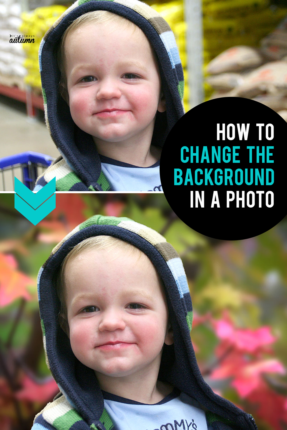 Learn how easy it is to change the background in a photo with just a few clicks!