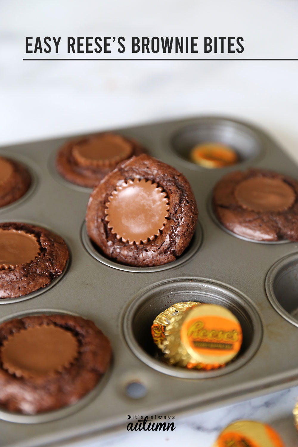 Easy peanut butter cup brownie bites