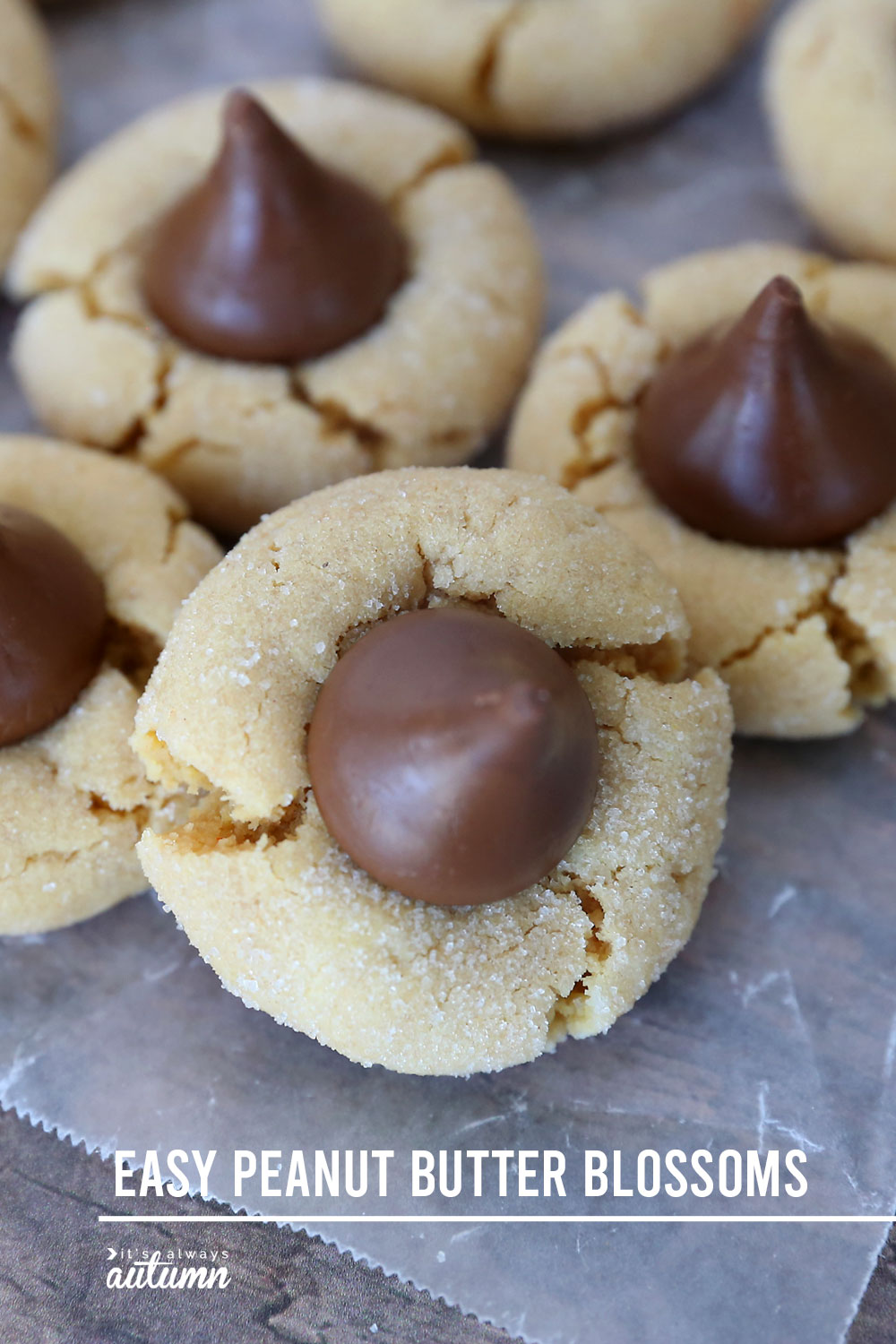 Peanut butter blossoms: peanut butter cookies with a Hershey kiss pressed in the middle