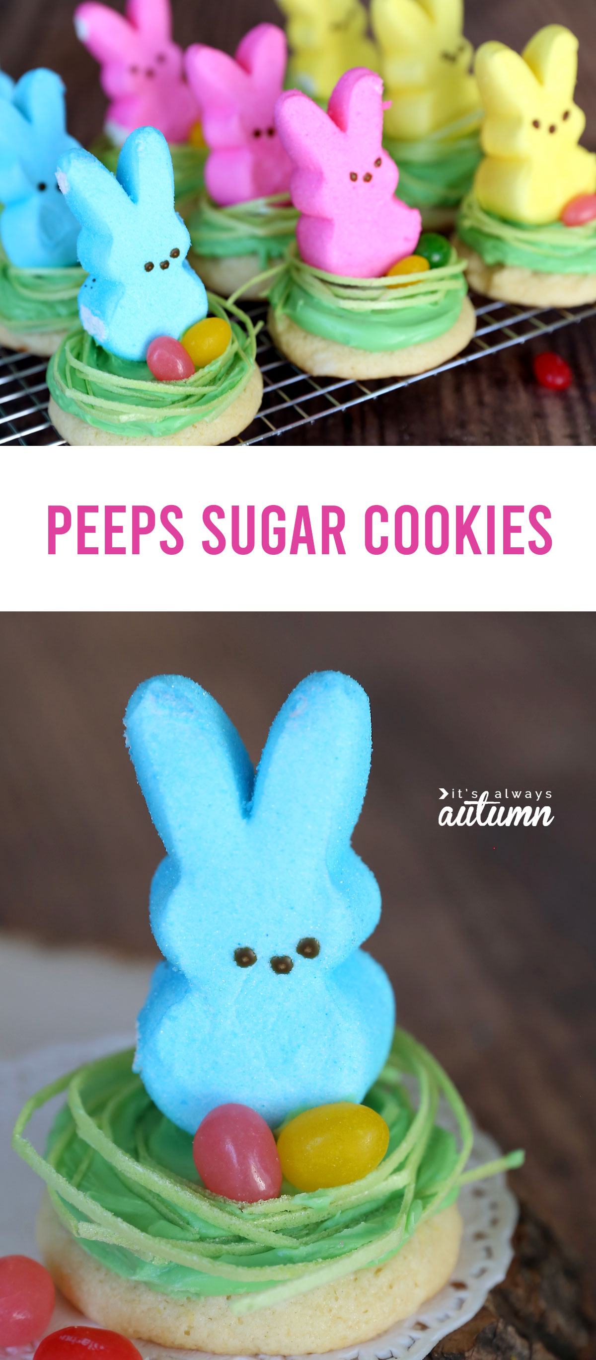 Cute Peeps cookies for Easter! Easy cheater sugar cookie recipe.
