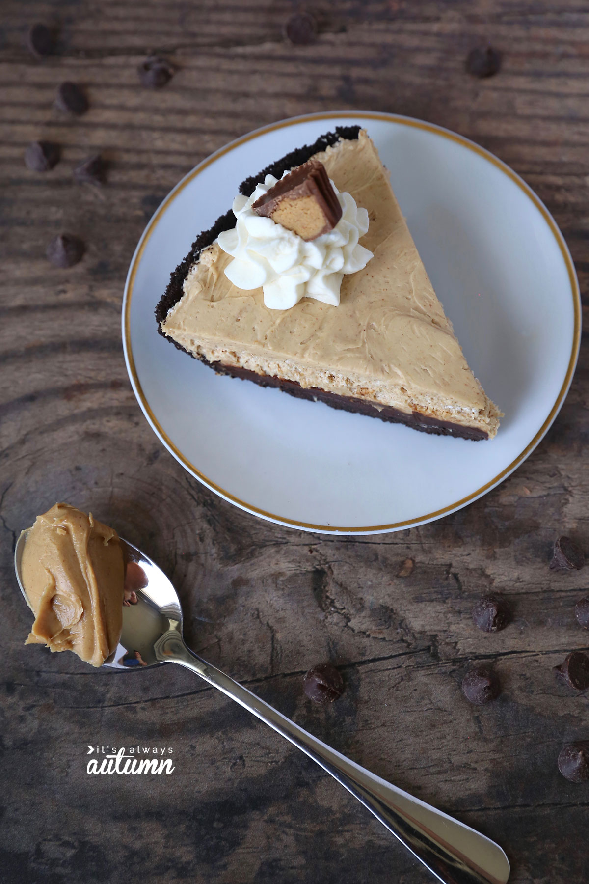 This easy chocolate peanut butter pie only takes 5 ingredients and 15 minutes to make!