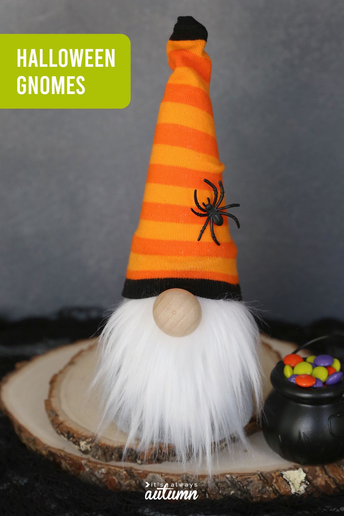 Halloween gnome with an orange striped hat and spider