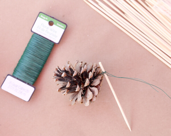 Pinecone wired or glue to skewer