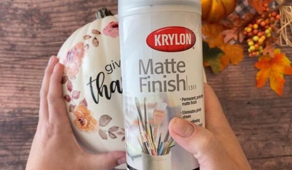 Spray with matte finish spray if desired