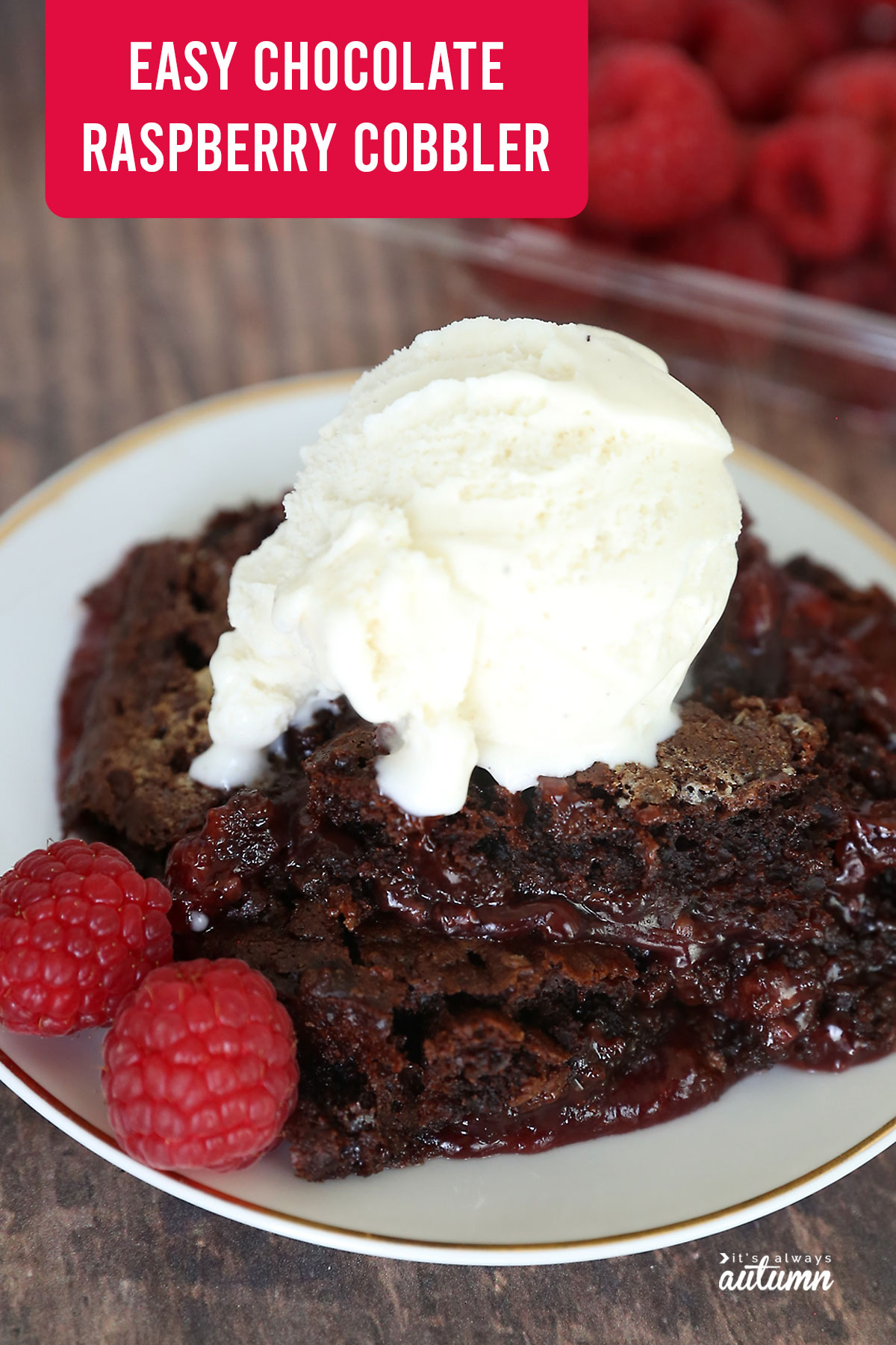 Chocolate raspberry cobbler with raspberries and vanilla ice cream