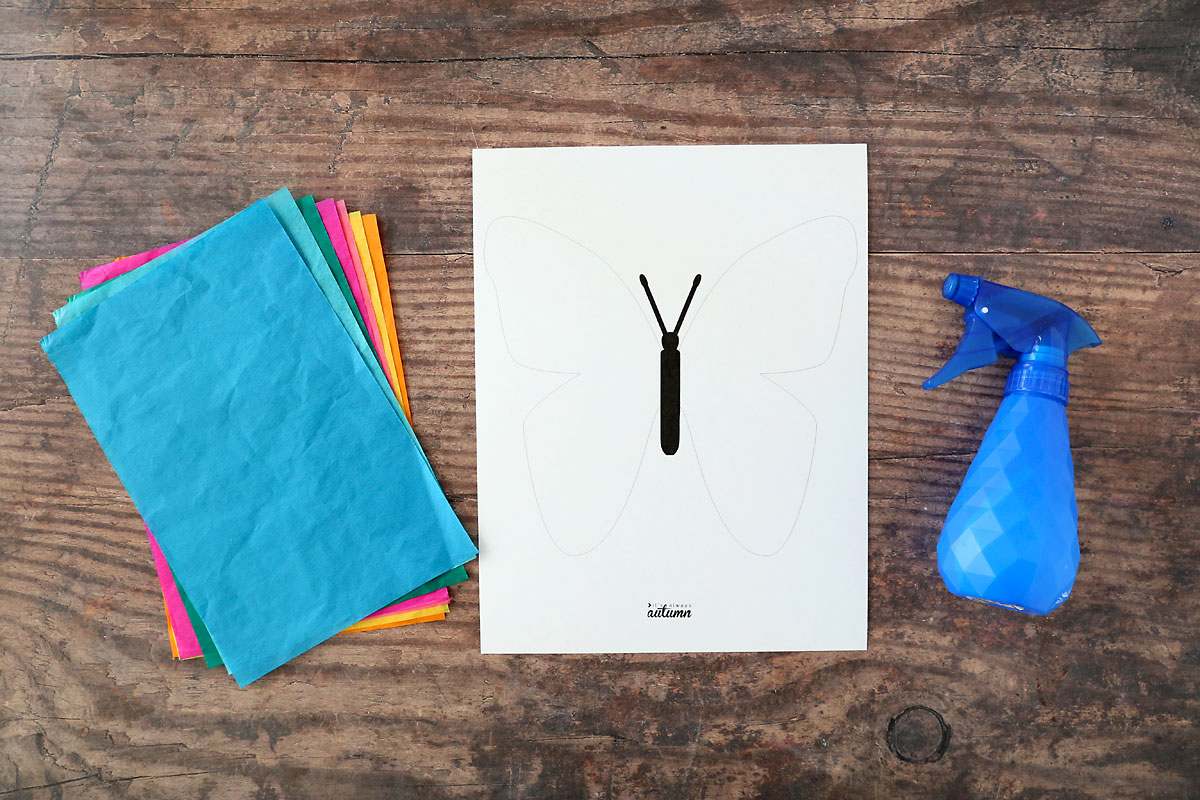 Stack of bleeding tissue paper in bright colors; printed butterfly outline; spray bottle