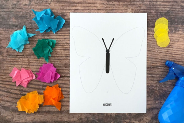 White cardstock with butterfly outline printed on it; squares of bleeding tissue paper in bright colors; spray bottle