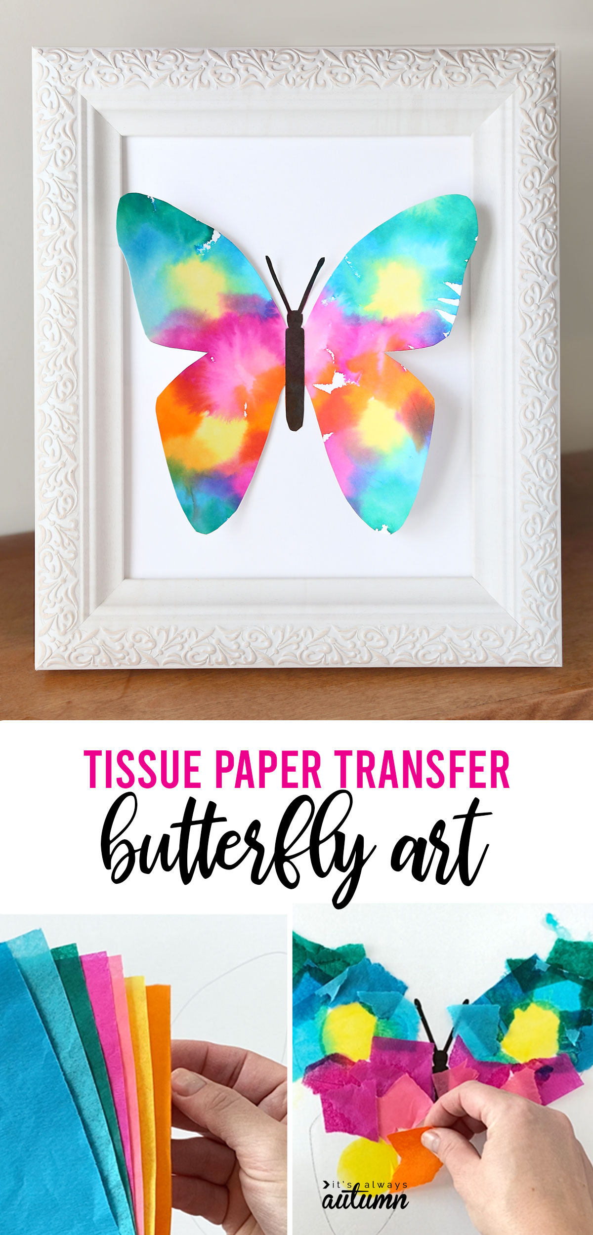 Colorful butterfly made of paper in a white picture frame; hands holding colorful tissue paper; hands placing squares of tissue paper on butterfly outline