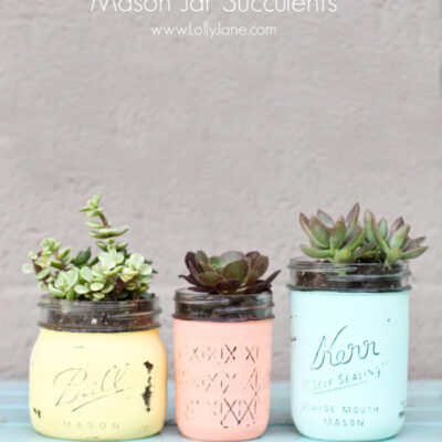 Succulents in mason jars that have been painted pastel colors