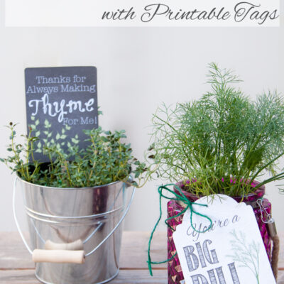 Potted herb DIY gifts; herbs in pots with gift tags