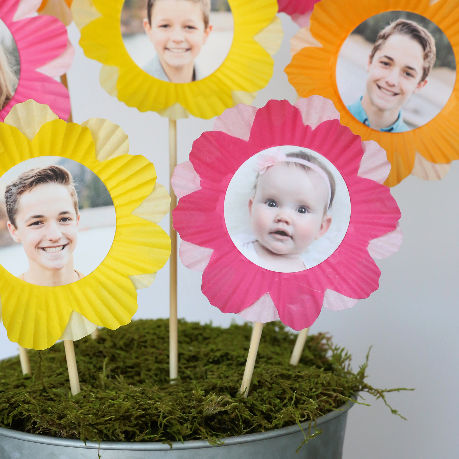 Flowers made from cupcake liners and photos