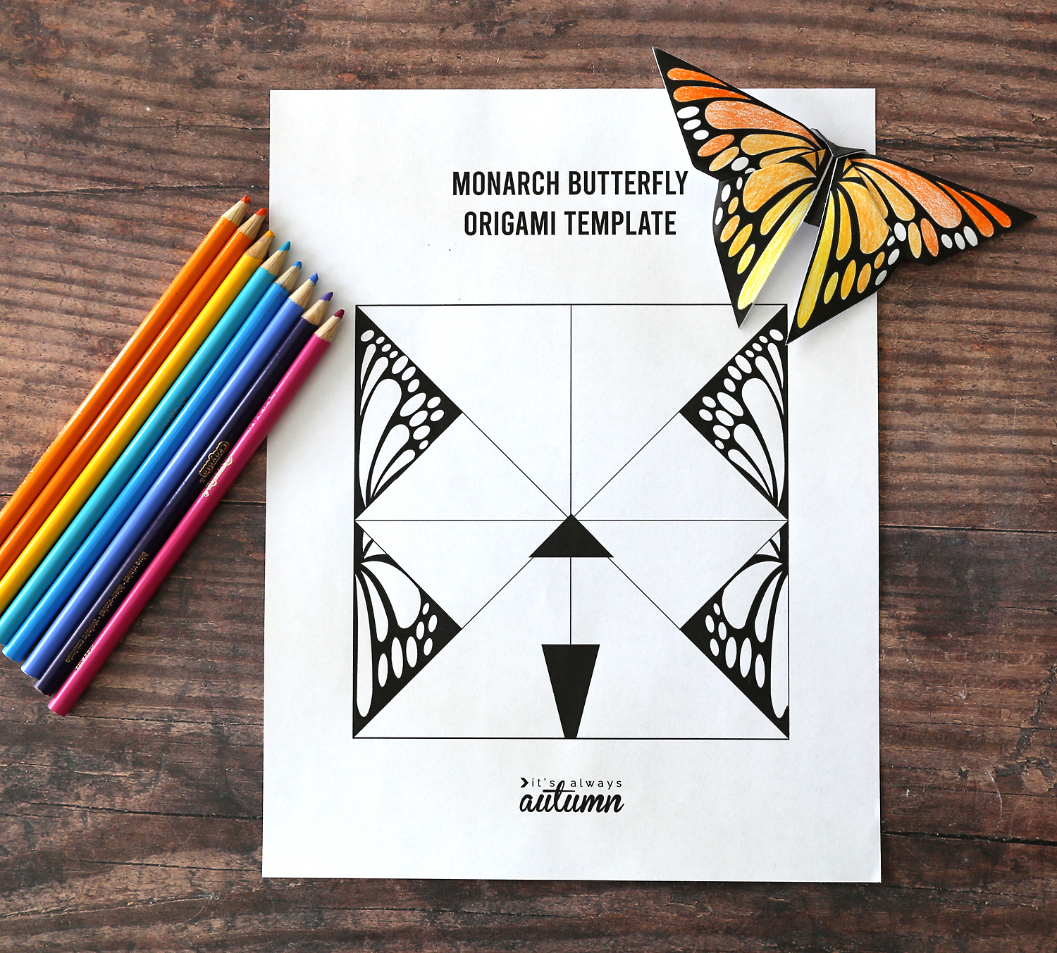 Monach butterfly origami template printed on white paper; folded origami butterfly; colored pencils