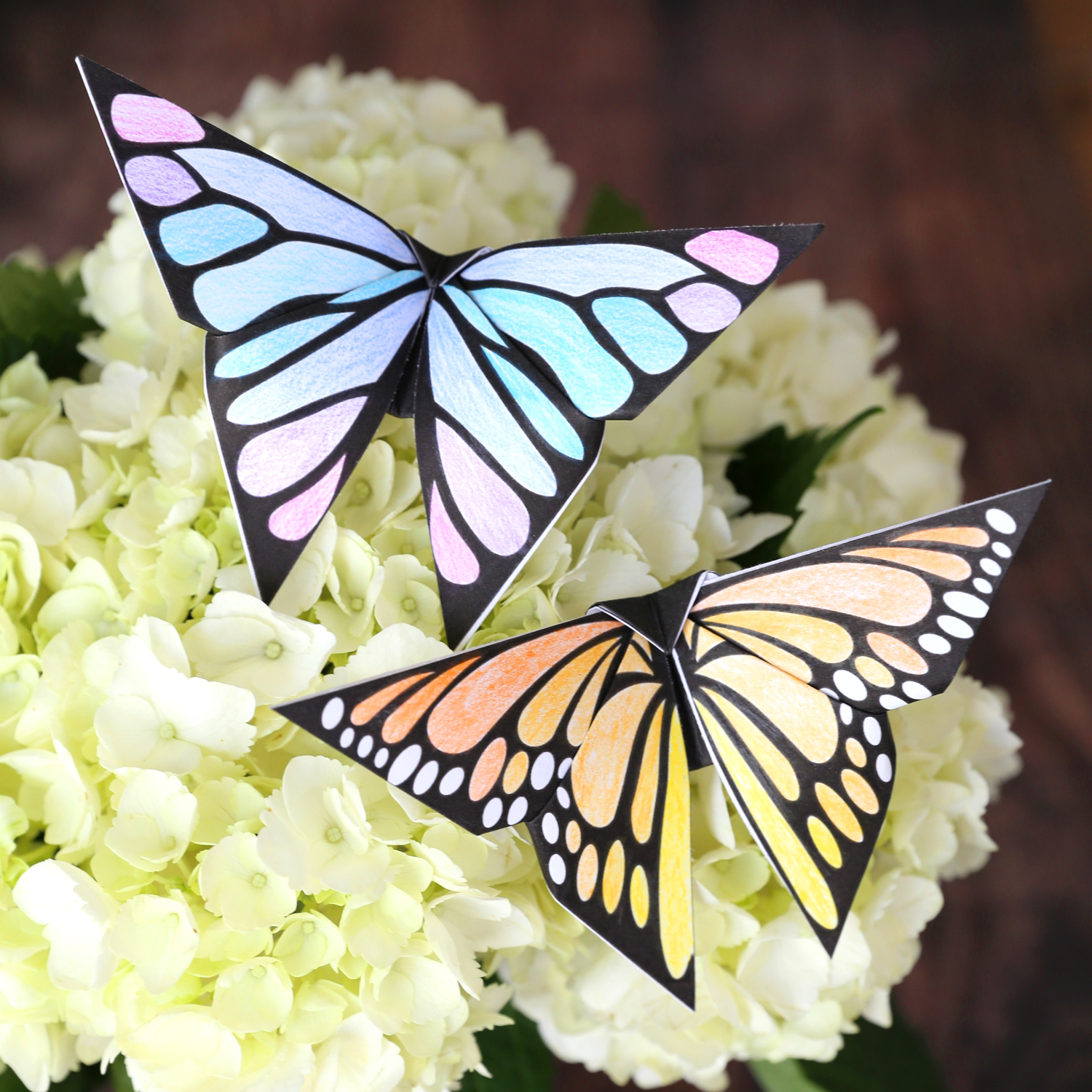 Two origami butterflies on flowers