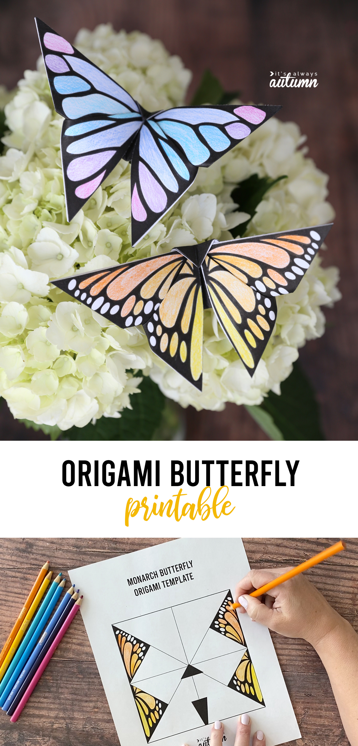 Two origami butterflies on flowers; words: origami butterfly printable; hand coloring in butterfly template