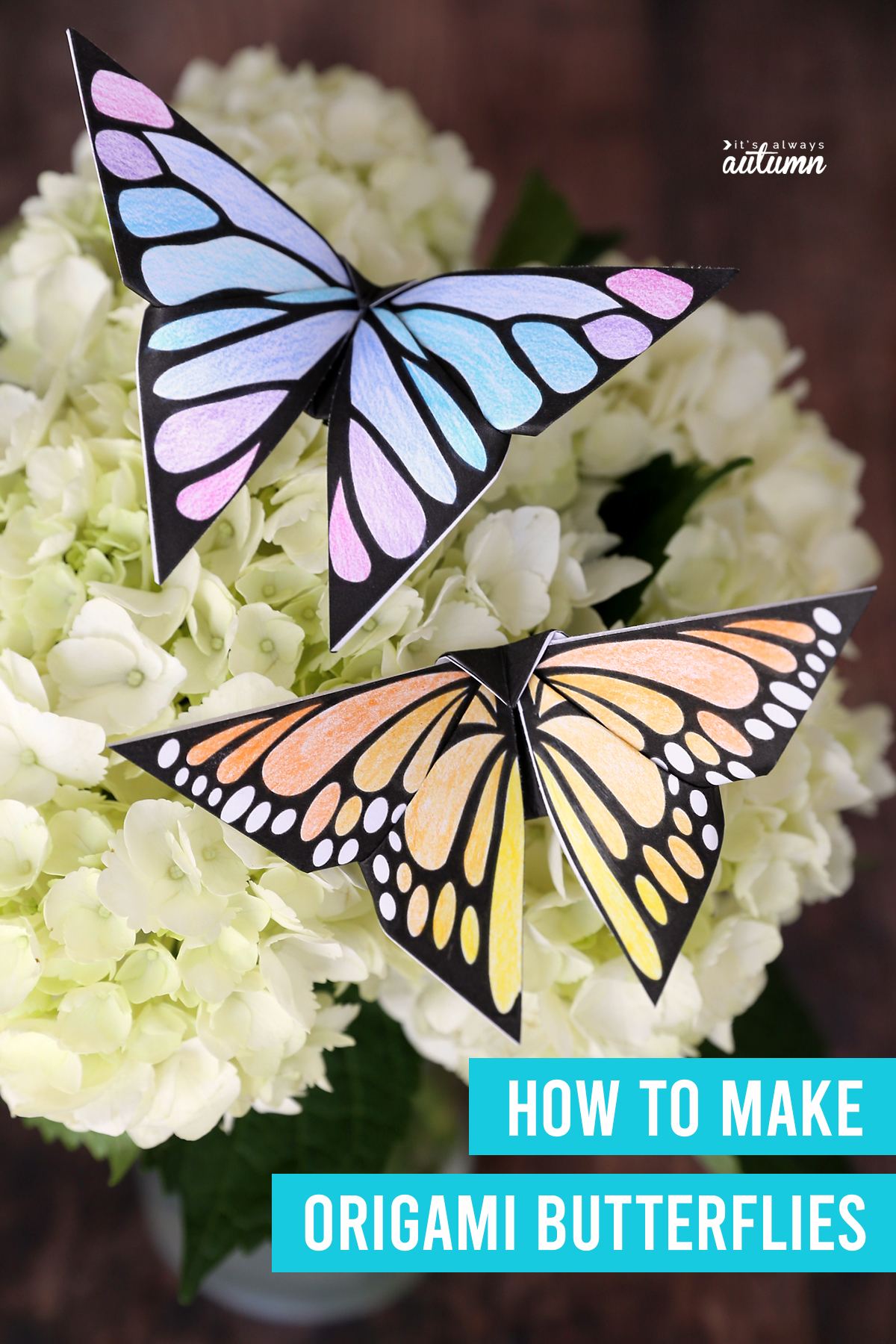 Two origami butterflies on flowers with words: how to make origami butterflies