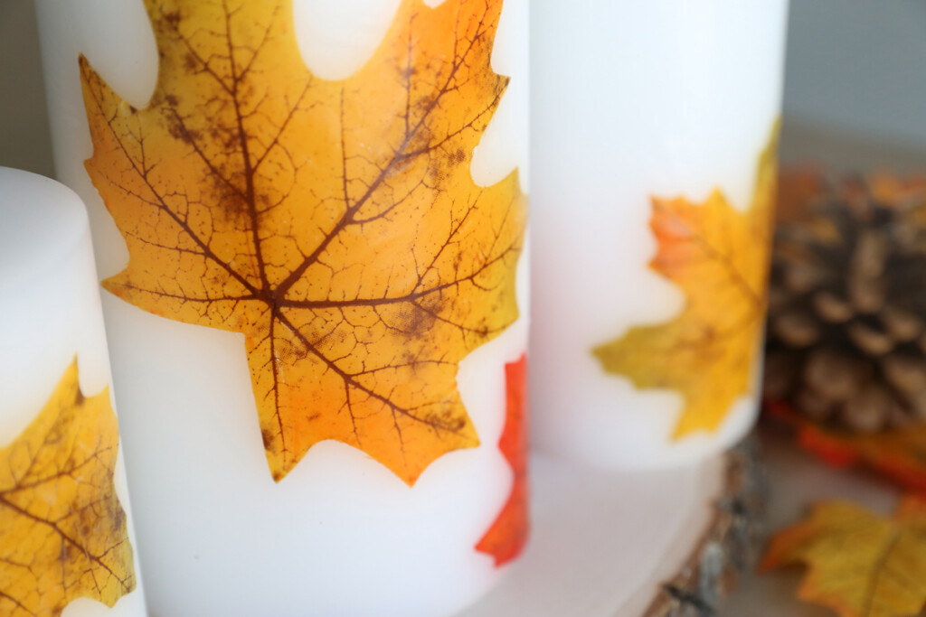Closeup of all leaf candles