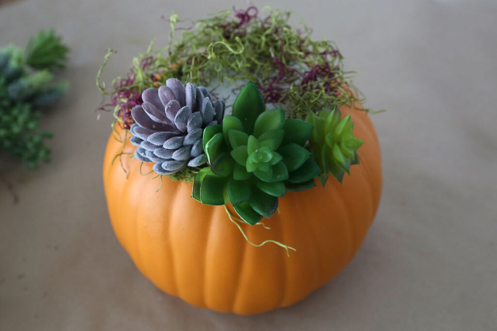 Faux succulents stuck into the floral foam in the pumpkin