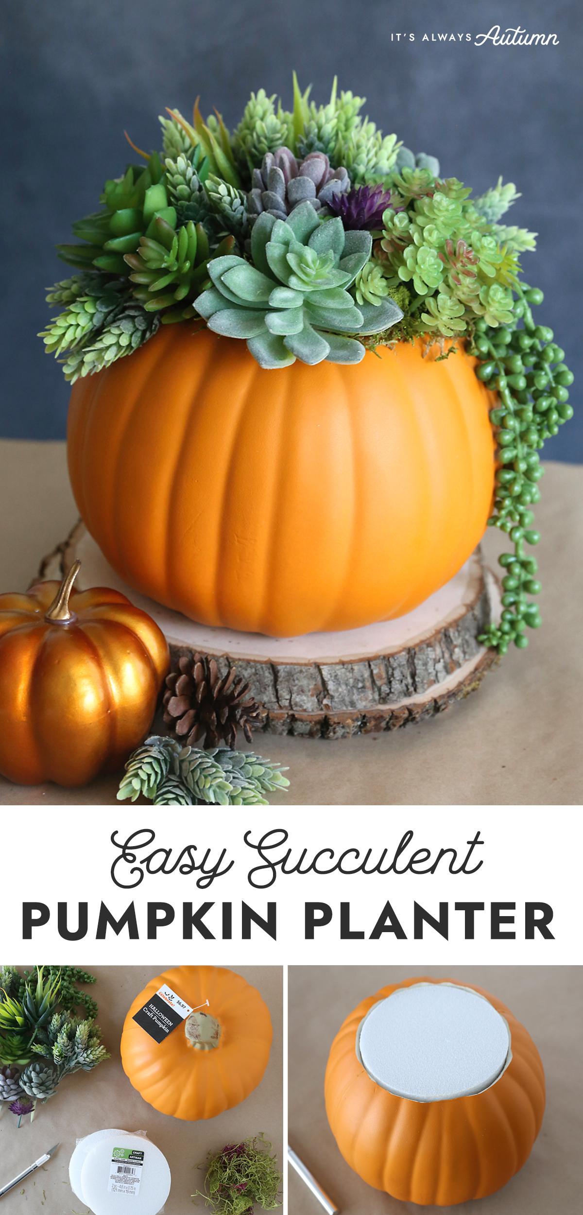 Easy Succulent Pumpkin Planter
