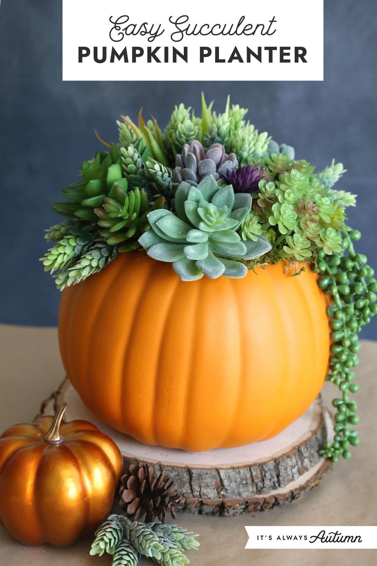 "Easy Succulent Pumpkin Planter: faux pumpkin with faux succulents ""planted"" in it"