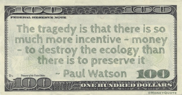 The tragedy is that there is so much more incentive – money – to destroy the ecology than there is to preserve it Quote