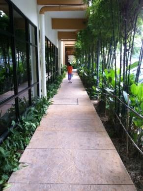 Neat resort corridor