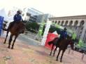 The Police oh horses - Nestle World Walking Day Putrajaya