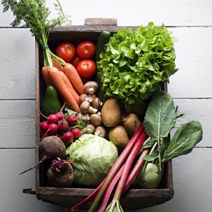 1-vegetable