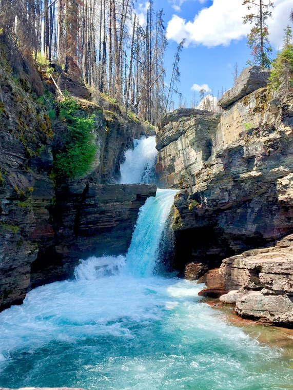 national parks, glacier national park, grinnell, highline, trail, hikes, adventure, forest, wildlife, wildflowers, nature waterfalls virginia montana