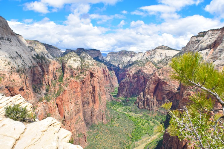 Zion national park, virgin river, landscape, sandstone cliffs, Utah National Parks, beautiful nature Scout's Lookout