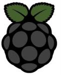 Rasperry Pi