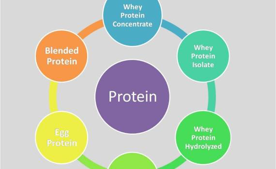 Whey Protein Benefits - Personal Experiences from Synergize