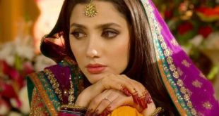 Model Posing in Mehndi Dress