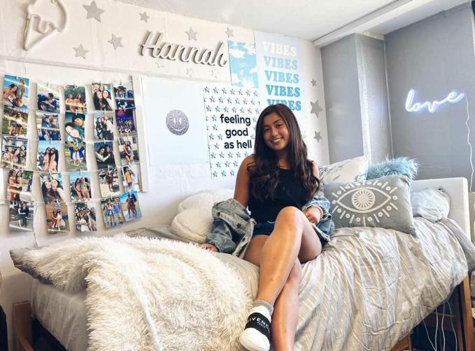 Dorm Room Ideas Loft Bed