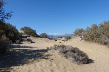 gran-canaria-maspalomas-dunen