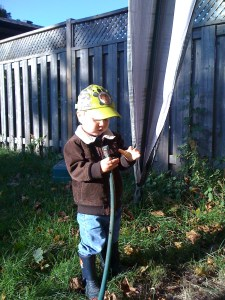 in the backyard with the hose