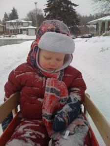 little boy asleep in a snowy sled