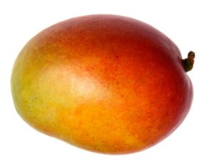 mango-baby-size-at-19-weeks