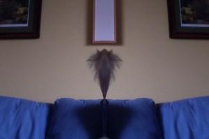 E mirror hair photo booth