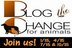 The Change for Animals: Collaboration