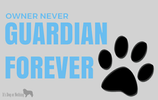 Owner Never, Guardian Forever