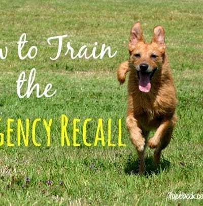 The Emergency Recall