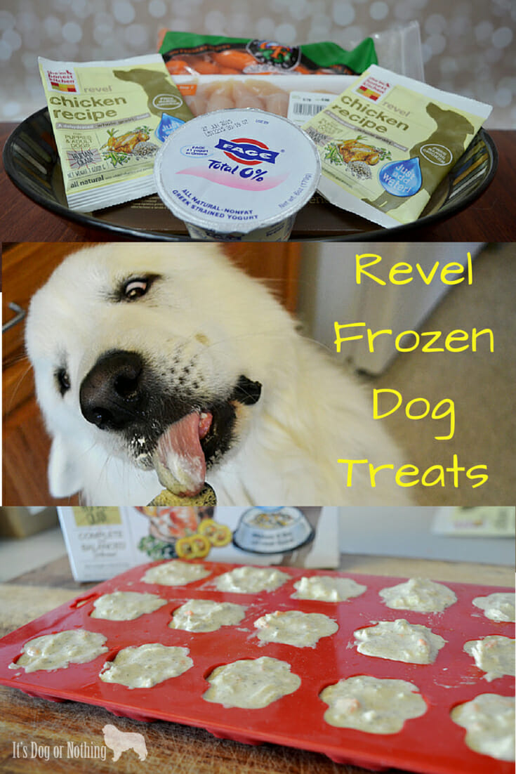 revel frozen treats: the honest kitchen - it's dog or nothing