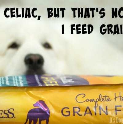 I Have Celiac, but That's Not Why I Feed Grain-Free #GrainFreeForMe