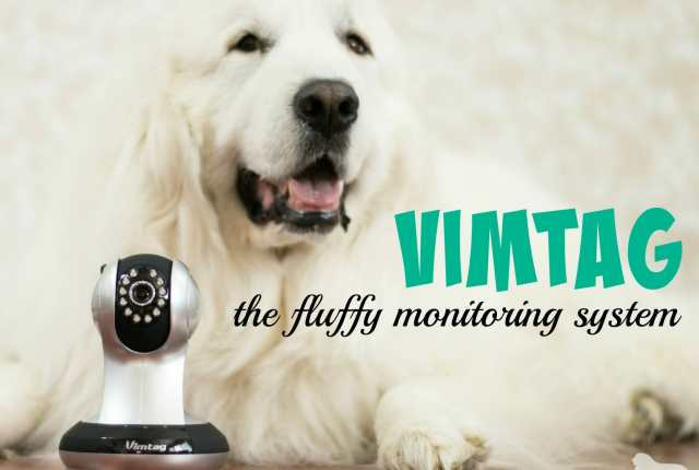 Moves and vacations can be stressful to dogs causing them to act out. Our Vimtag camera helps us keep track of our Great Pyrenees and ensure their safety.