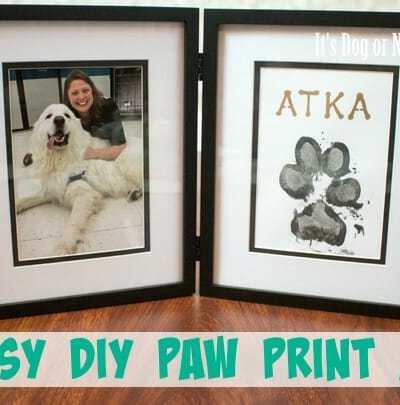 Easy DIY Paw Print Art